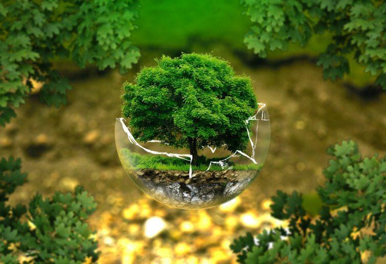 Europejski Zielony Ład zagrożony Komisja Europejska daje tylko 3 proc. potrzebnych funduszy