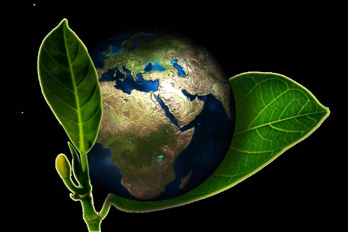 Gigantyczne pieniądze dla Narodowego Funduszu Ochrony Środowiska i Gospodarki Wodnej