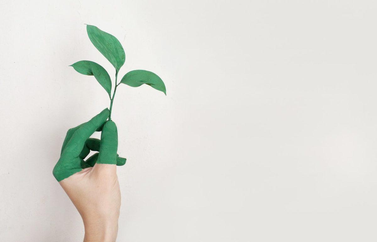 Jakie rozwiązania ekologiczne znajdziemy w nowych osiedlach