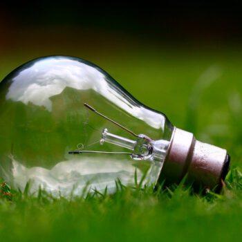 Korporacje masowo kupują prąd z OZE. Czy zabraknie zielonej energii dla firm