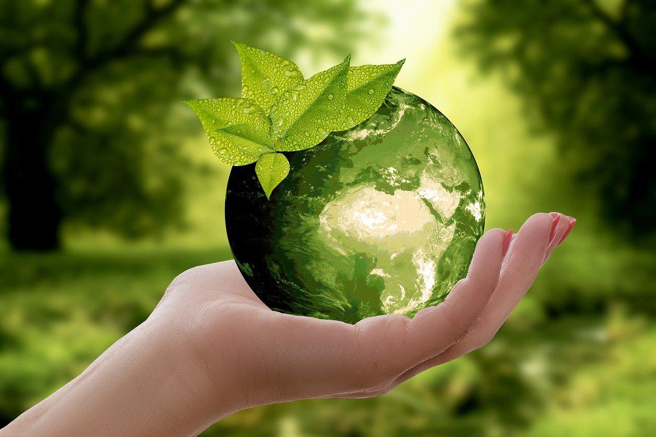 Polacy niechętnie inwestują w działania proekologiczne