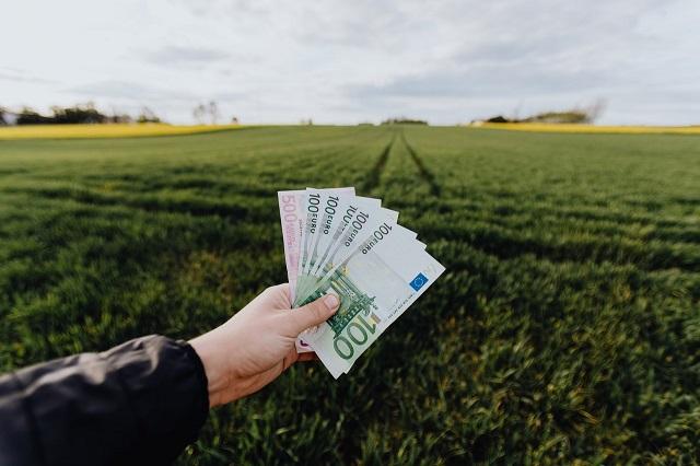 Przeciętny rolnik z Warmii i Mazur, to milioner