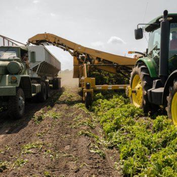 Raport ONZ: Większość rządowych nakładów na rolnictwo zniekształca ceny i szkodzi środowisku