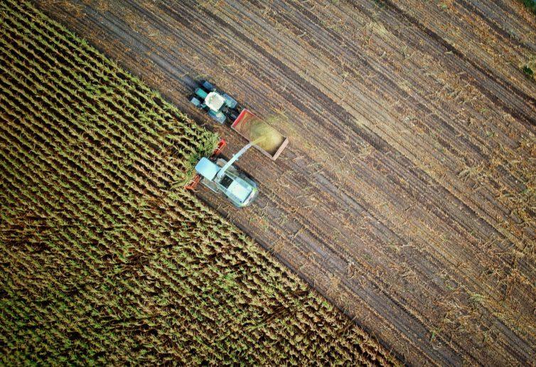 Sprzedaż gospodarstwa rolnego przed upływem 5 lat od nabycia a podatek dochodowy