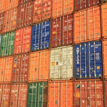 Działalność eksportowa