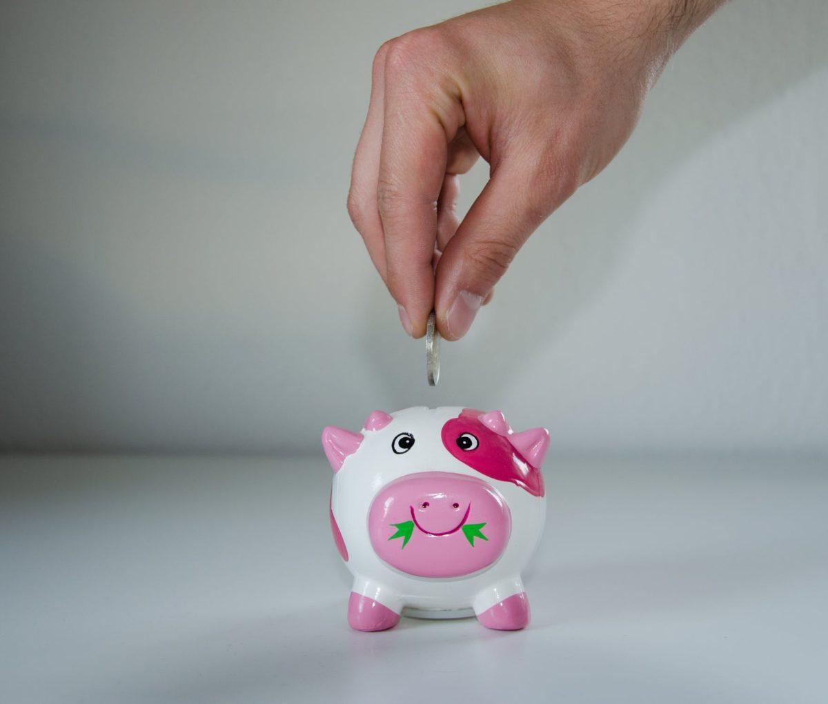Jak bezpieczne będą nasze oszczędności w PPK?