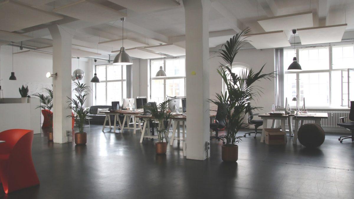 zielone biuro